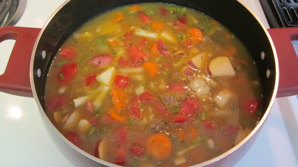 Savory Hamburger/Veggie Soup